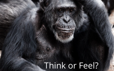 Think or Feel?