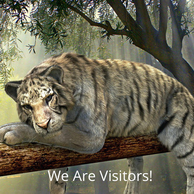 We Are Visitors!