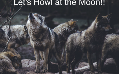 Let's Howl at the Moon!!