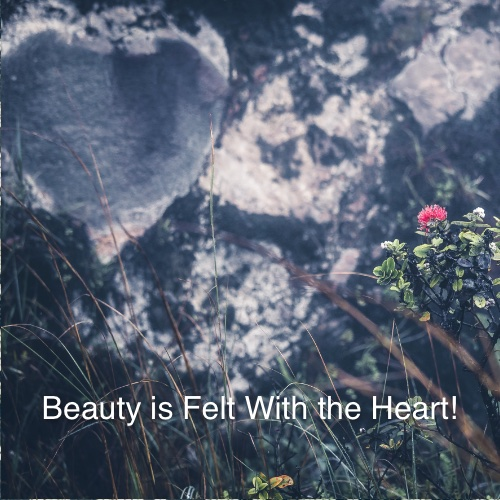 Beauty is Felt With the Heart!