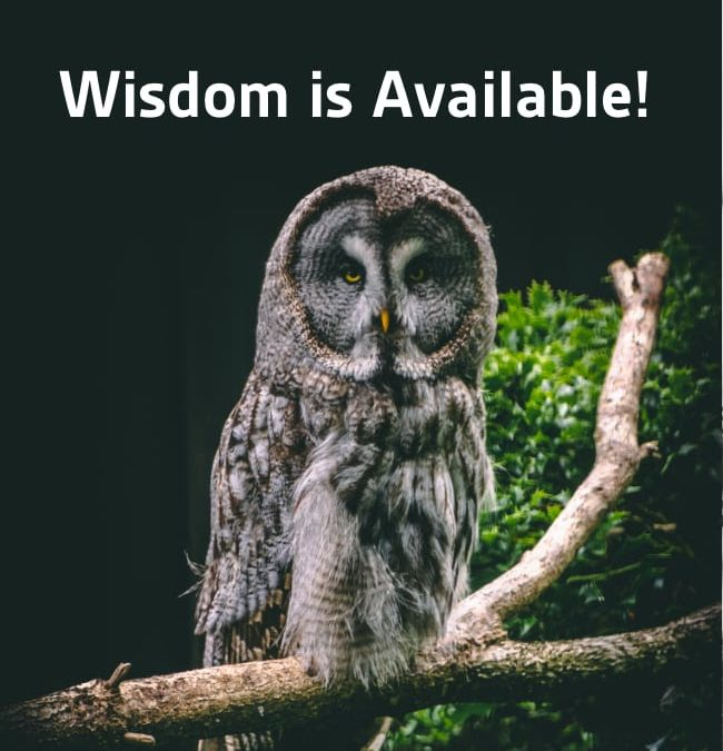 Wisdom is Available!